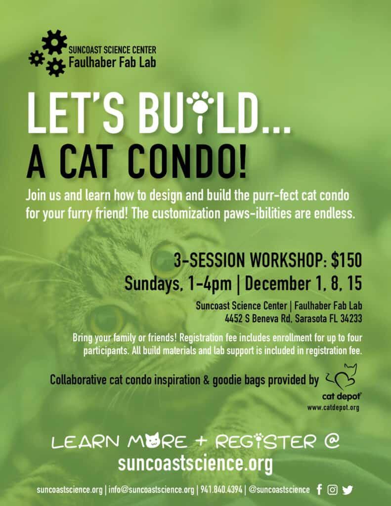 Cat Condo workshop flyer